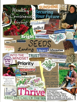 Seed Lending Library collage