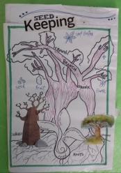 Seed Keeping Features 3 collaged Baobab trees and a sprouting Seed in full colour