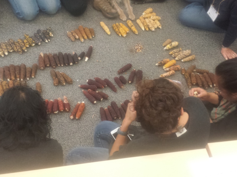 A group of students gathers around 100 Corn Cobs