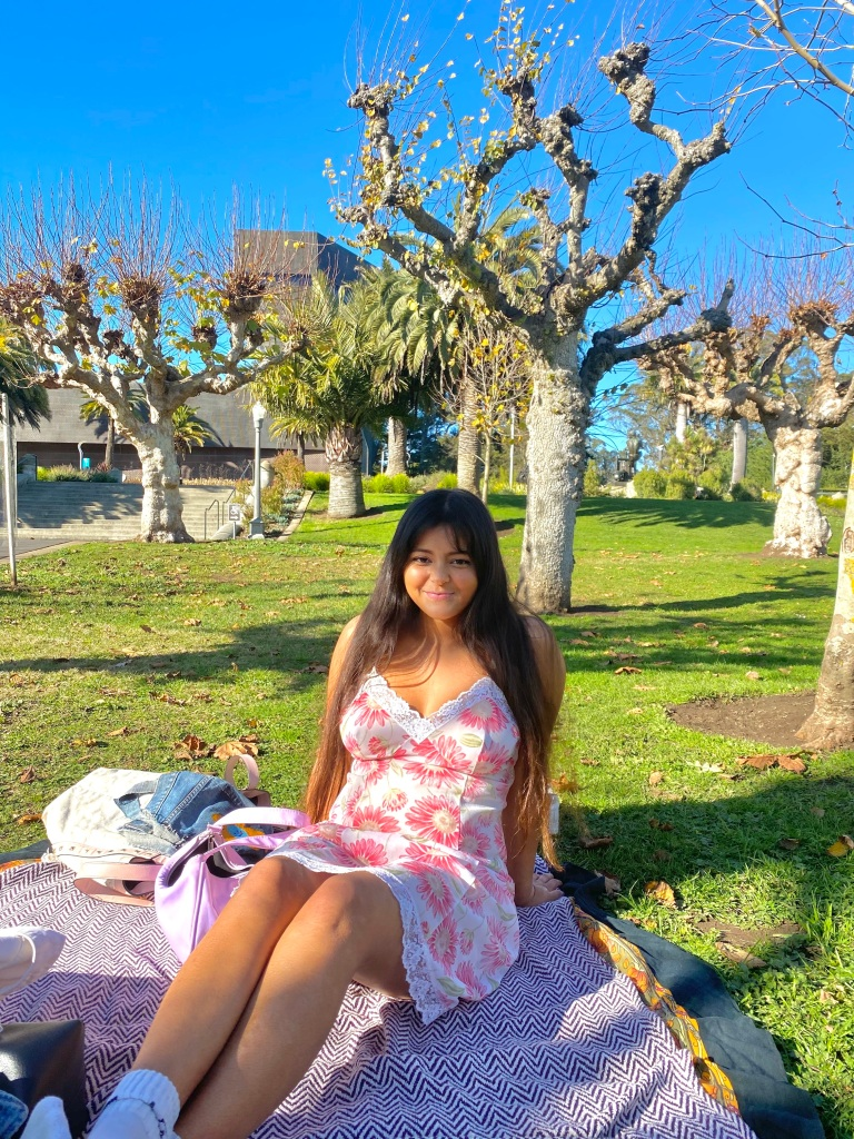 Courtney poses in the park in a pink floral dress on a striped blanket