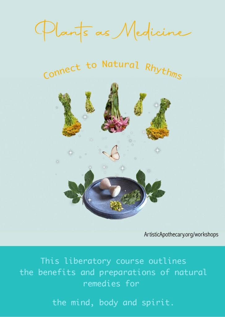 Plants As Medicine flyer image is of 5 having herbs and a blue mortar and pestle.